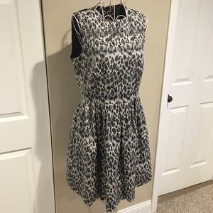 Taylor Dresses - Taylor Fit and Flare Dress